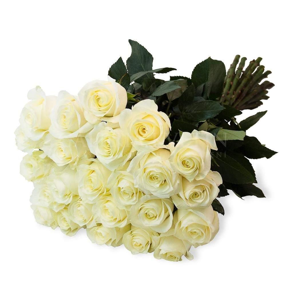 bouquet of roses 7 100 flower gallery. Black Bedroom Furniture Sets. Home Design Ideas