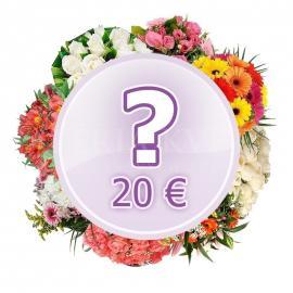 Bouquet Surprise 20 €