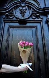 Bouquet Fan Fan Tulip