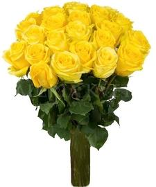 Yellow roses bouquet (7-30)