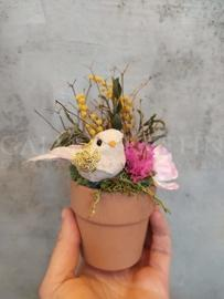 Merry Bird Arrangement