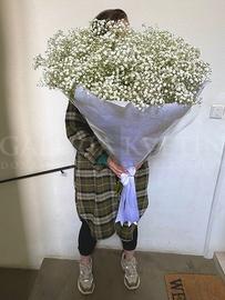 Bouquet Big Gypsophila