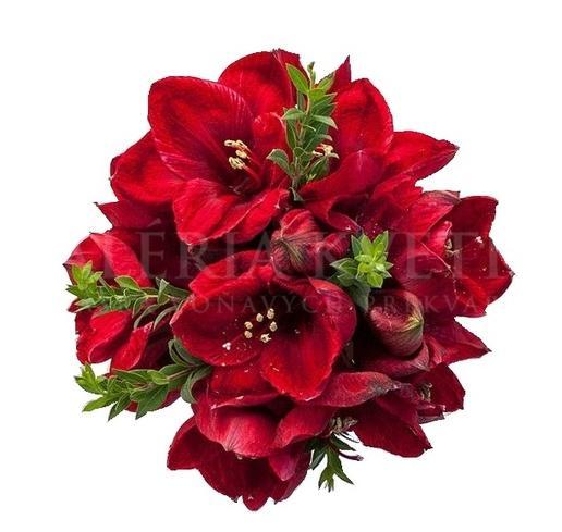Bouquet Merry Xmas