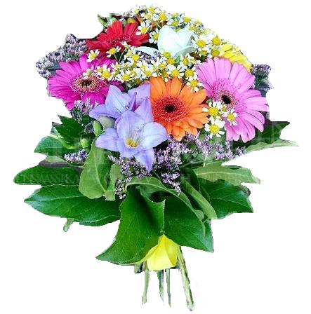Bouquet Happy germini