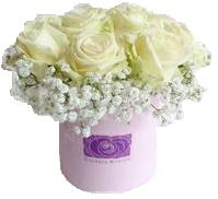 Flower Box KISS OF PRINCESS Mini