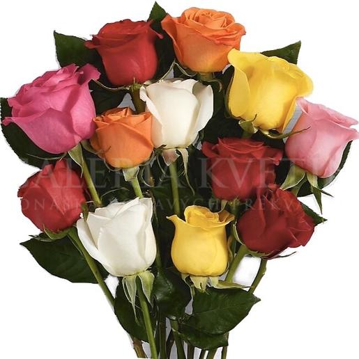 color roses